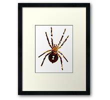 Arachnophilia-Dark Framed Print