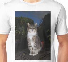 Tabby cat sat on patio at night Unisex T-Shirt