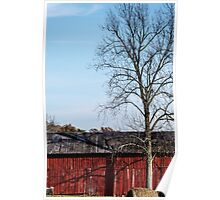 Red Barn With Tree Poster