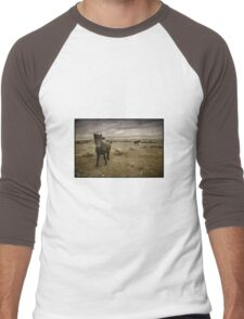 The Ponies of Dartmoor Men's Baseball ¾ T-Shirt