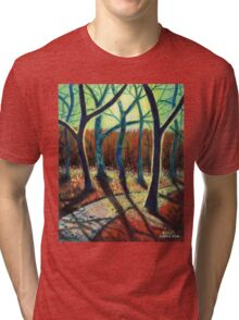 'Blue Ridge Ruminations #10' Tri-blend T-Shirt