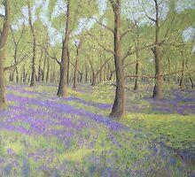 Bluebell Wood by BarbaraBird