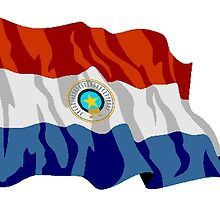 Paraguay Flag by kwg2200