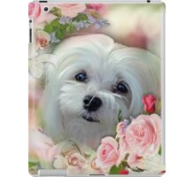 Snowdrop the Maltese - The Face that Melts my Heart iPad Case/Skin