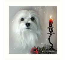 Snowdrop the Maltese - The Light in my Life ! Art Print
