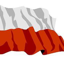 Poland Flag by kwg2200