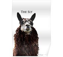 The Sly Poster
