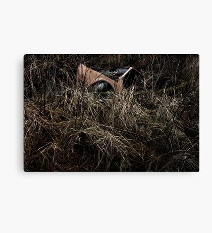 5.11.2014: Car in Well Canvas Print