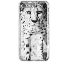 Cheetah V iPhone Case/Skin