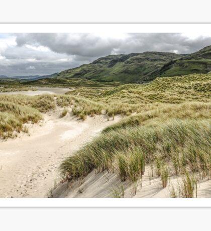 Sand Dunes of Maghera Beach  - Ireland Sticker