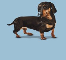 The Happy Dachshund by rjzinger