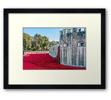 Cascading Poppies, Tower of London Framed Print