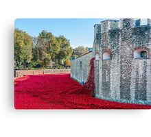 Cascading Poppies, Tower of London Canvas Print