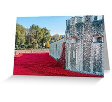 Cascading Poppies, Tower of London Greeting Card