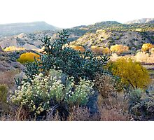New Mexico Highlands Photographic Print