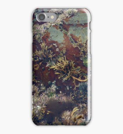 Underwater Scene iPhone Case/Skin