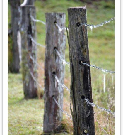 Fence Posts Sticker