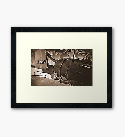 SBD and a Mitchell Tail Framed Print