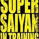 Super Saiyan in Training by Penelope Barbalios