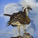Osprey And A Mullet by Phyllis Beiser