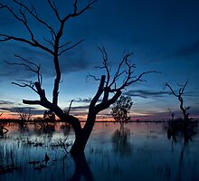 Sunset on the Lake - Menindee, NSW by Malcolm Katon