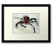 Glass Beaded Spider on Fur Framed Print