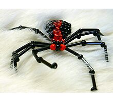 Glass Beaded Spider on Fur Photographic Print