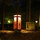 Call in the Woods by mdench