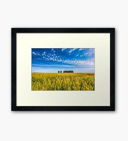 Summer On The Prairies Framed Print