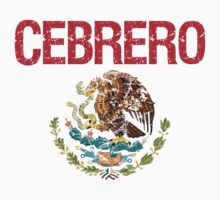 Cebrero Surname Mexican Kids Clothes