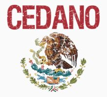 Cedano Surname Mexican Kids Clothes