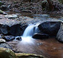 Curtis Falls Cascades by Wayne  Nixon  (W E NIXON PHOTOGRAPHY)