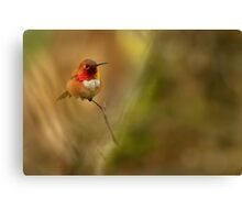 IN ALL HIS GLORY Canvas Print