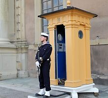 Military Guard by Kathleen Brant