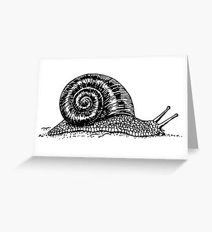 Snail Drawing Greeting Card