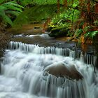 Lady Barron Creek cascades by Kevin McGennan