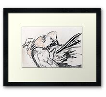 Dove Love 4 Framed Print
