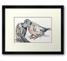 Dove Love 1 Framed Print