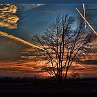 Contrails at Sunset by Sheryl Gerhard