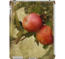 Pink Ladies iPad Case/Skin