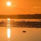 Saturday Morning along the estuary pano by Martina Fagan