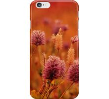 Northern Territory Wildflowers iPhone Case/Skin