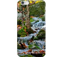 Casco Stream iPhone Case/Skin