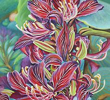 Full Blossom Orchid Tree by Jane Girardot
