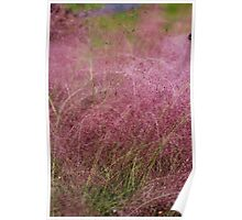 Pink Fuzz Poster