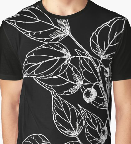 Britton And Brown Illustrated flora of the northern states and Canada 0411 Celtis tenuifolia BB 1913 2 Graphic T-Shirt