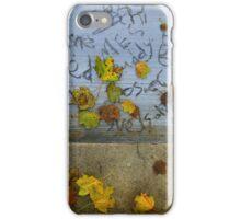 Fall Sidewalk iPhone Case/Skin