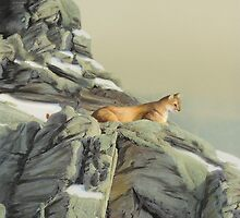 Cougar Perch by Jane Girardot