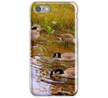 Geese in Pond iPhone Case/Skin
