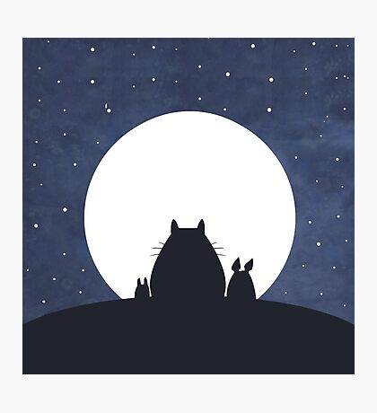 TOTORO AND FRIENDS Photographic Print